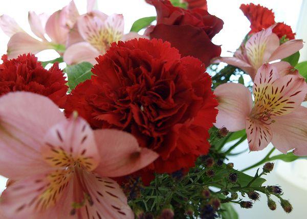 Flowers Jeanne edit e-mail 014