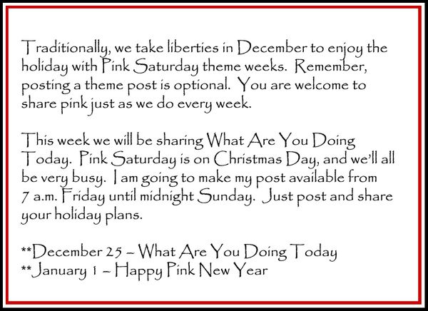 Blog Message 4