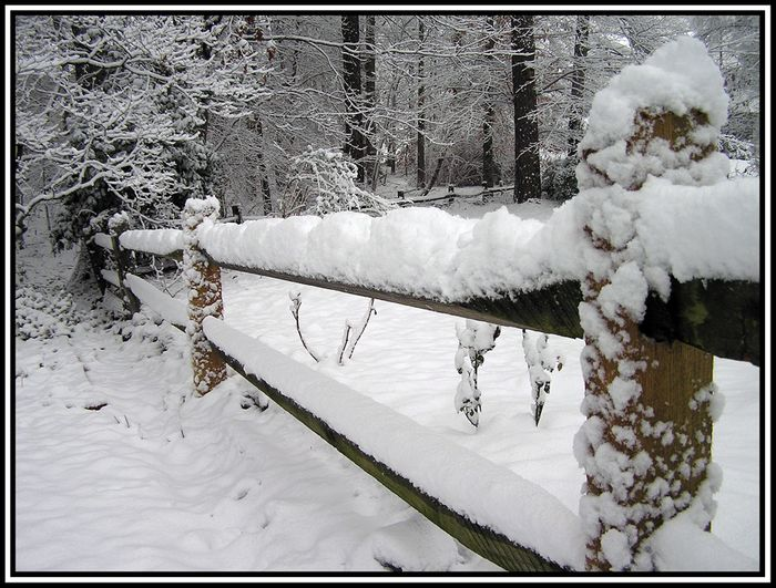 Split Rail Fence edit e-mail