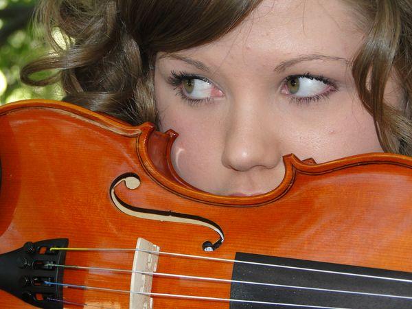 Violin 007