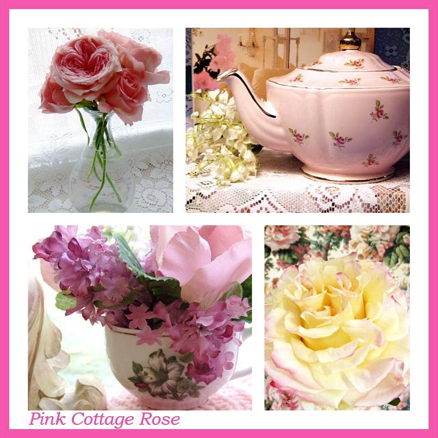 Pink Cottage Rose