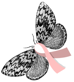 Breast_cancer_awareness_moth