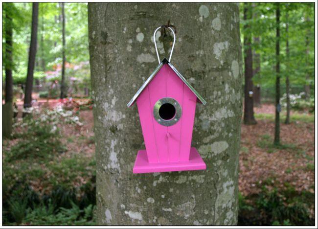 Pink Birdhouse ee