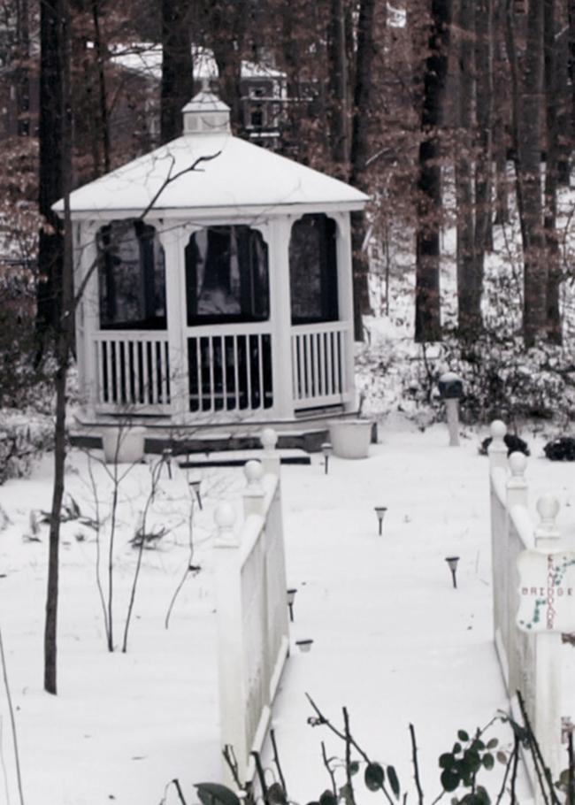 Gazebo January Snow