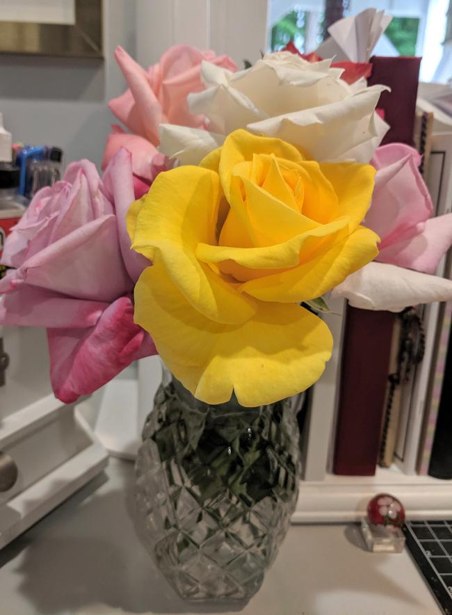 Roses for my desk