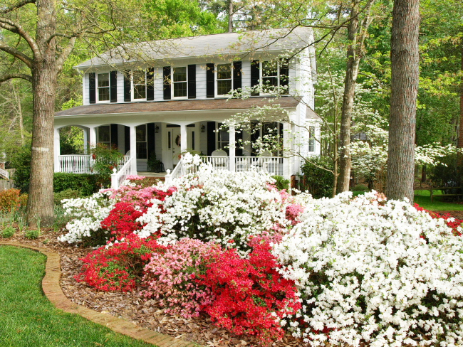 House Spring 2 edit